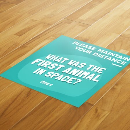 Fun Fact 6 Social Distancing - 4 Pack Square Floor Stickers 8